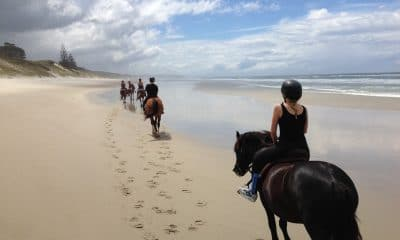 10 Horse Trails Around The World You Need to Explore