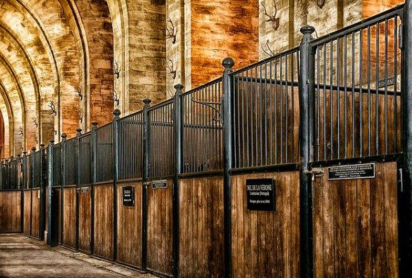 Luxury Horse Barns