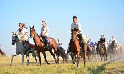 Several riders endurance riding