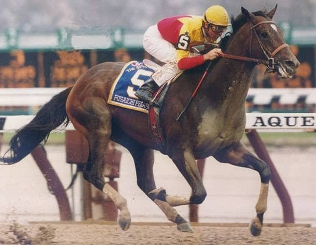 Fusaichi Pegasus the most expensive horse in history