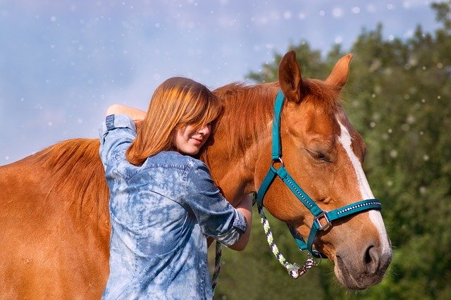 The bond between horse and owner