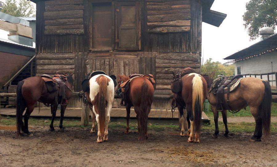 horseyhooves.com
