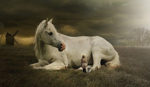 Girl with her horse spirit guide