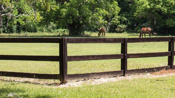 3 rail wooden post fencing