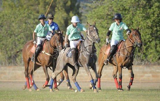 Quatre chevaux et cavaliers jouant au polo à cheval