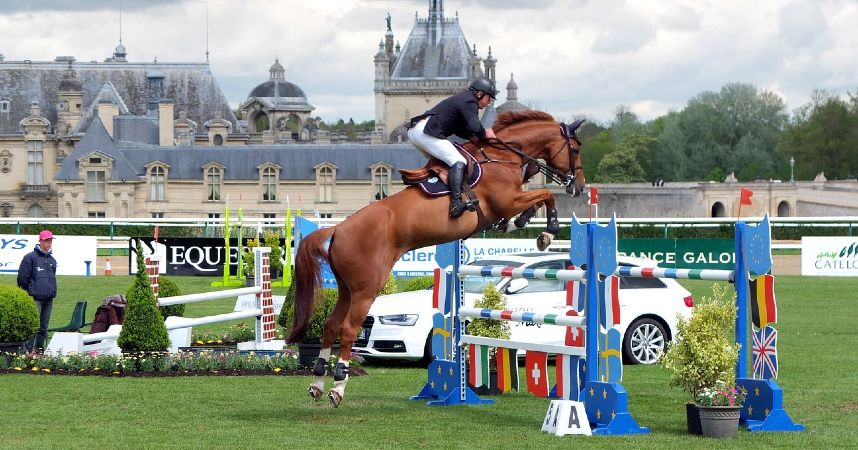 Show Jumping, a horse riding sport and competition