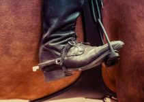 9 Best Horse Riding Boots for Beginners