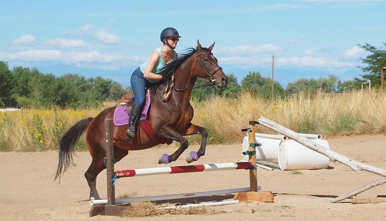 Woman jumping an OTTB horse over a jump in a field