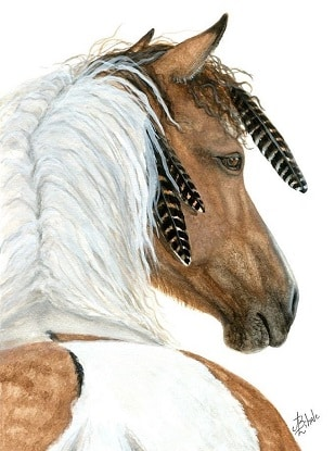 AmyLyn Bihrle drawing of a native american horse