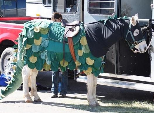 Horse dragon costume