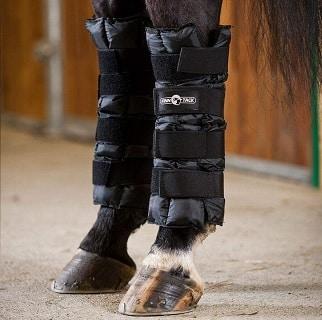 Finntack ice wrap on a horse's leg