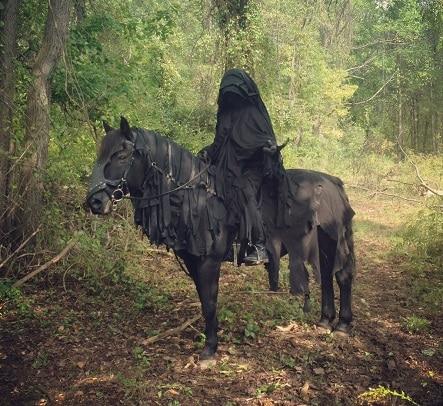 Nazgul rider and horse fancy dress idea