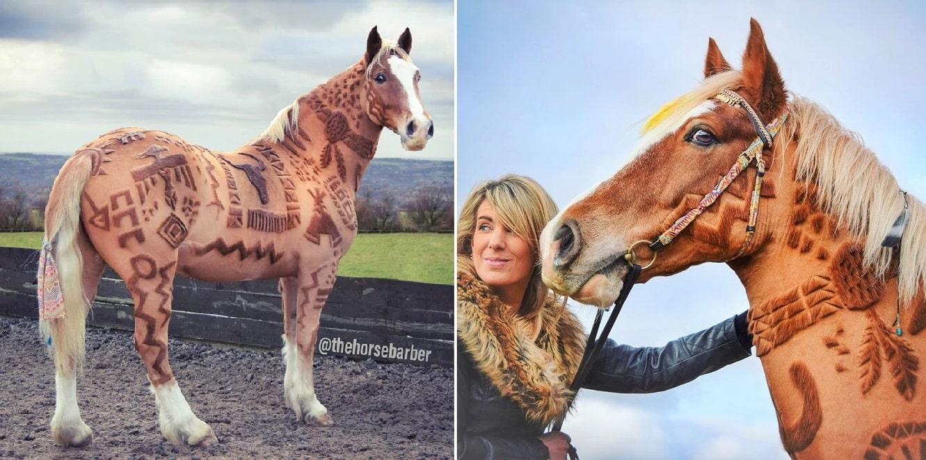 Horse barber Melody Hames