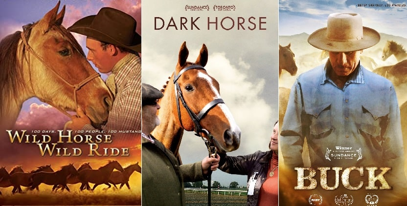 Best horse documentaries you can watch online (Amazon & Netflix)