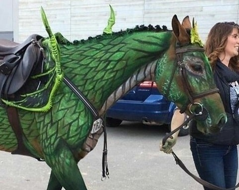 Horse dragon painting costume