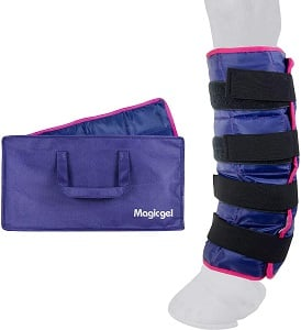 Horse ice pack colored purple