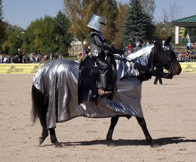 Medieval knight horse costume