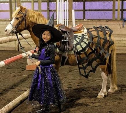 Horse spider web Fancy dress costume