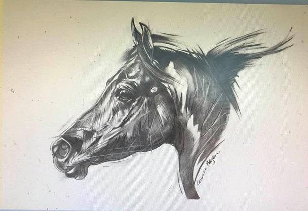 Louise Mizen Furgusen drawing of a horse
