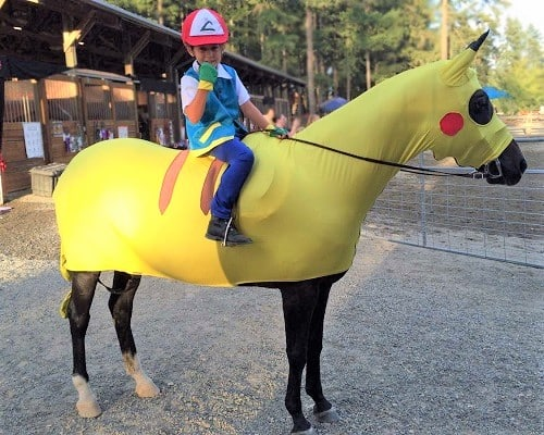 Kid and horse Pokemon costume
