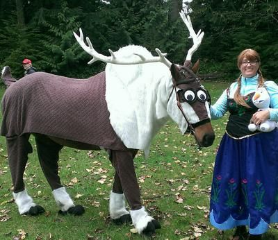 Horse dressed up as a reindeer for fancy dress