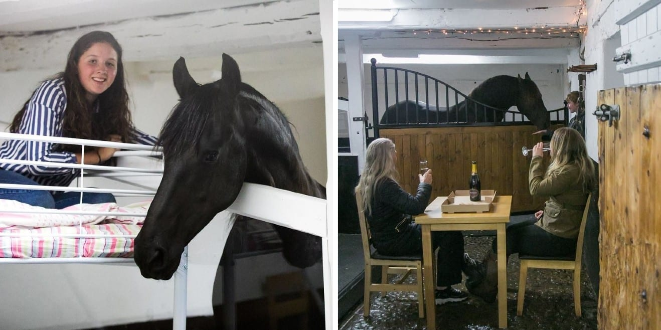 Stable Stays horse hotel in the UK