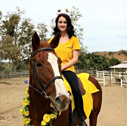 Sunflower horse costume