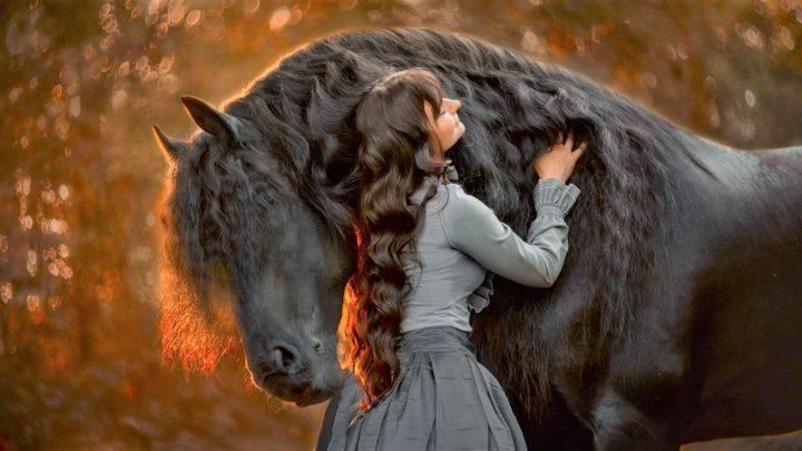 Woman talking to a Friesian horse