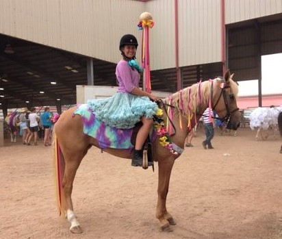 Coursel horse DIY costumes ideas how to make