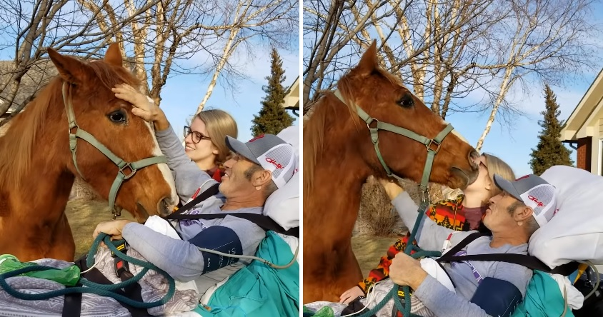 Cowboy gets dying wish to see his horse