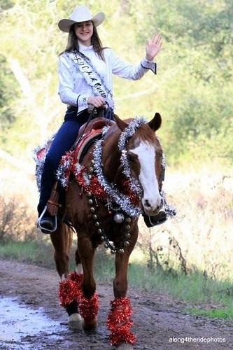 Horse DIY Christmas costume
