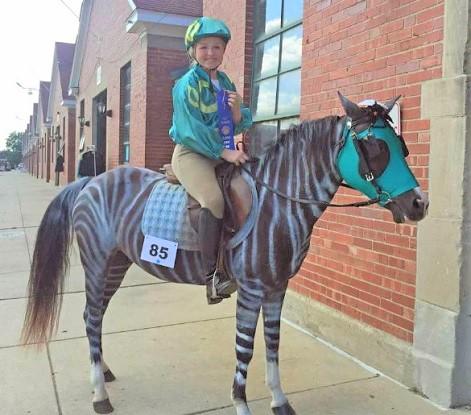Racing zebra DIY horse costume idea with a rider