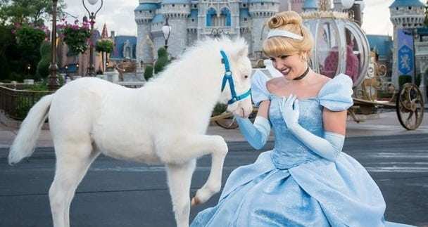 Disney park has a new adorable Cinderella pony
