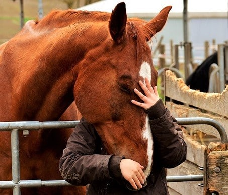 Woman cuddling with her horse's head