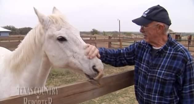 Couple spend retirement saving horses