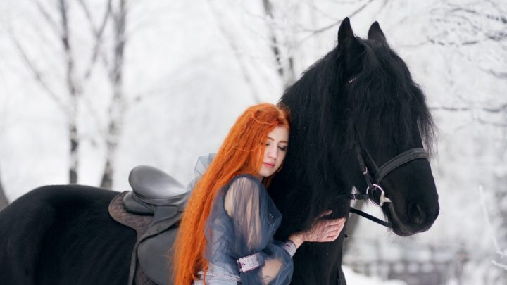 Signs you were born to be a horse lover and equestrian
