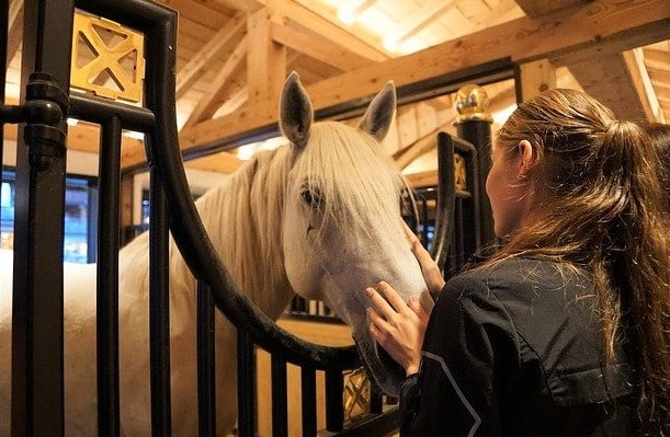 Girl visiting her horse at the barn