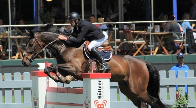 Show Jumping competition