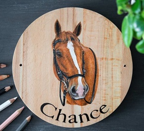 Custom horse stall name plate with horse portrait and name