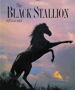 The Black Stallion movie