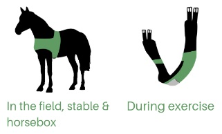 Trackener App kit to be worn on the horse