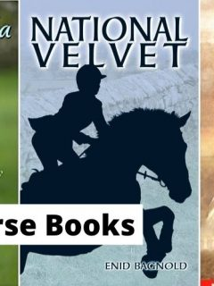 Best horse books for horse lovers