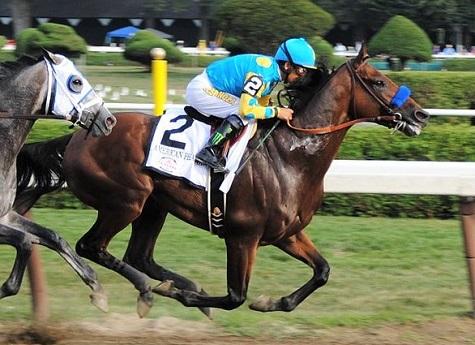 American Pharoah, famous racehorse