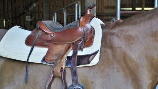 Best saddle pads for trail riding western & English