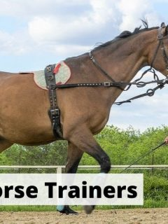 Most famous horse trainers in the world list