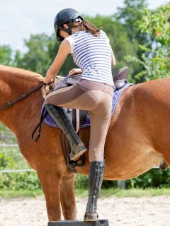Girl getting on her horse. Mounting a horse safely