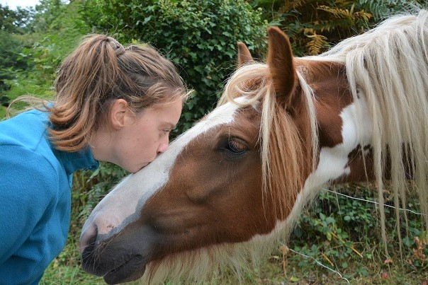 Girl kissing a horse and communicating
