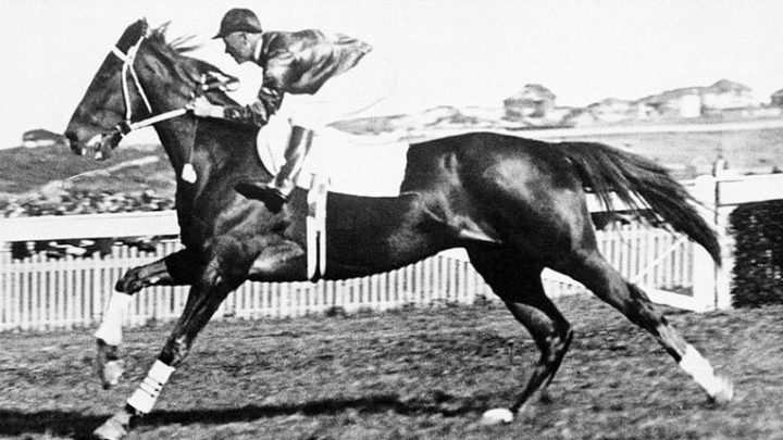 Phar Lap 'Big Red' famous race horse, facts history, died, owner and stats