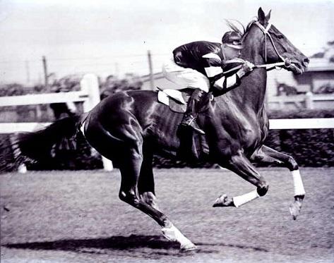 Phar Lap racing on a horse race track
