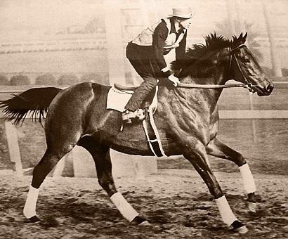 Seabiscuit racehorse racing